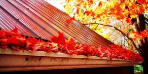 fall gutters small